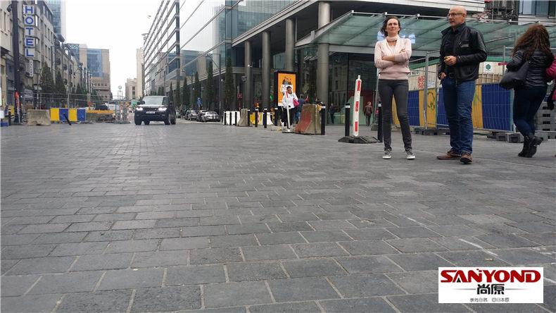 比利时布鲁塞尔市中心某市政广场总面积约20000平方米,地铺火山岩全由尚原石业独家供应